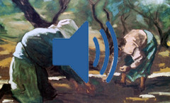 raccoglitrici-lorenzo-audio